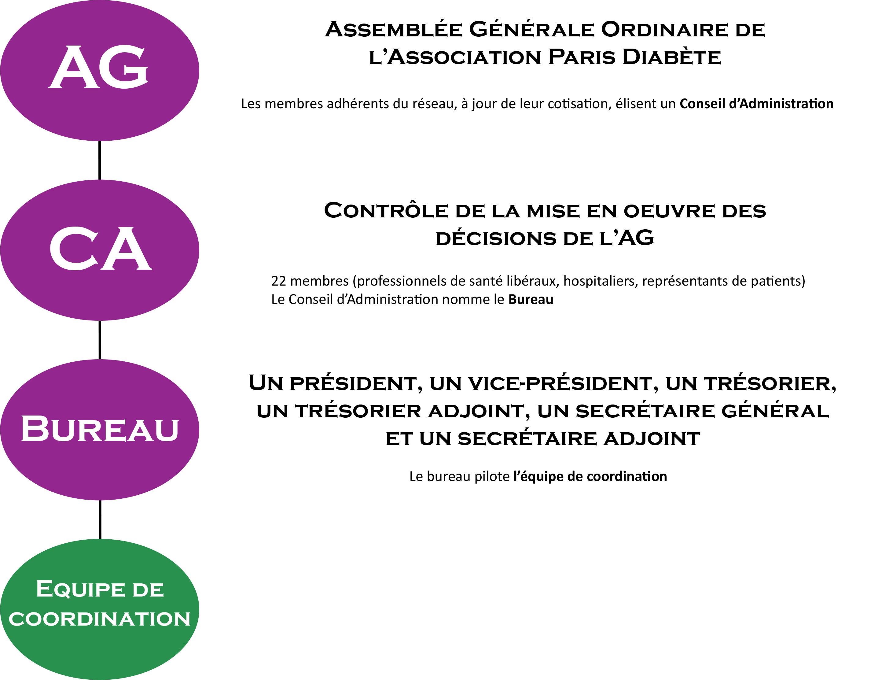 organigramme organisation Paris Diabète